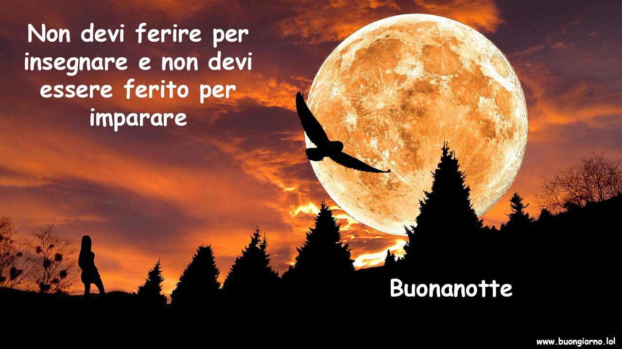 Un gufo in volo con una luna piena alle spalle e l'ombra di una ragazza in lontananza che osserva
