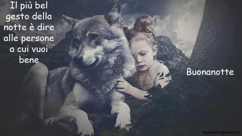Una bambina abbraccia un lupo grigio nelle montagne
