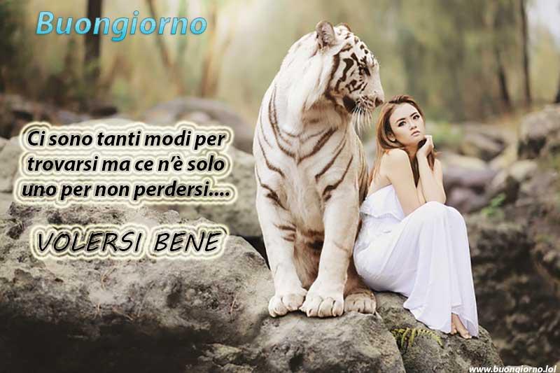 Una ragazza seduta vicino ad una tigre bianca