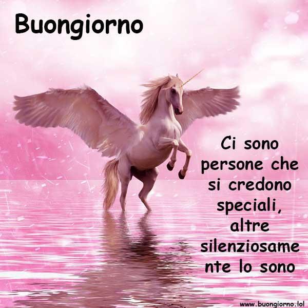 Un unicorno in mezzo ad un mare tutto rosa