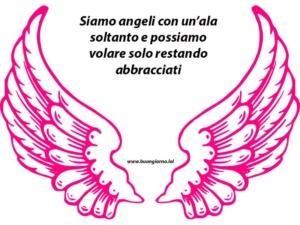 ali di angelo rosa