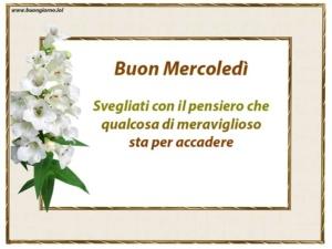 cartolina bianca con a lato un fiore bianco