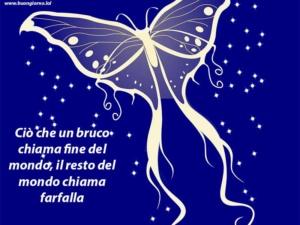 disegno di una farfalla su uno sfondo blu