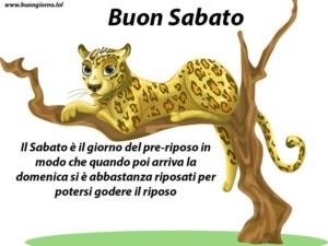 disegno di un ghepardo sopra un albero