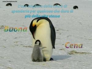 piccolo di pinguino abbraccia la sua mamma